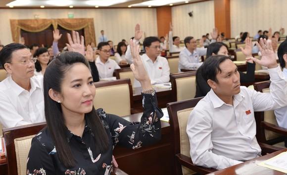 HĐND TPHCM họp bất thường về công tác nhân sự  ảnh 2