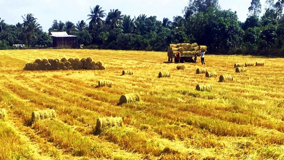 Nông nghiệp được khẳng định vai trò là trụ đỡ của nền kinh tế trong khó khăn