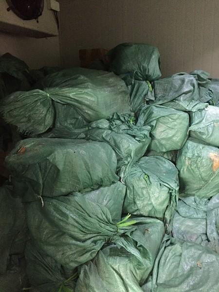 Phát hiện gần 6 tấn thịt gia súc, gia cầm, thuỷ sản... không rõ nguồn gốc ảnh 1