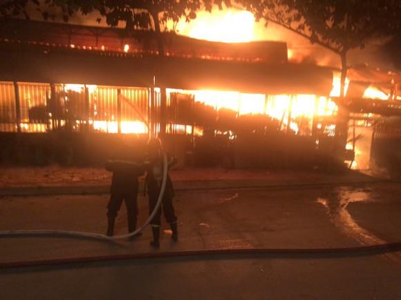 Cháy xưởng gỗ ở phường An Phú Đông, quận 12 ảnh 2