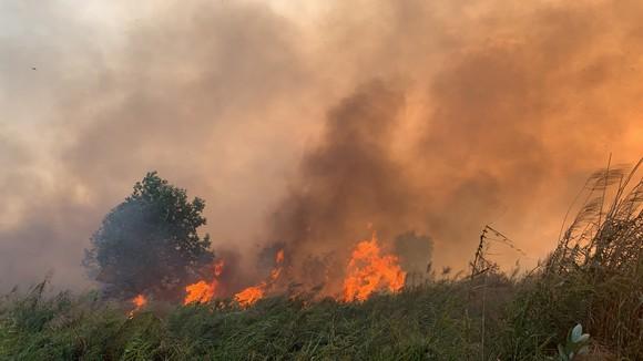 PCCC TPHCM nhận được 13 tin báo cháy cỏ trong 1 ngày. Ảnh: CHÍ THẠCH