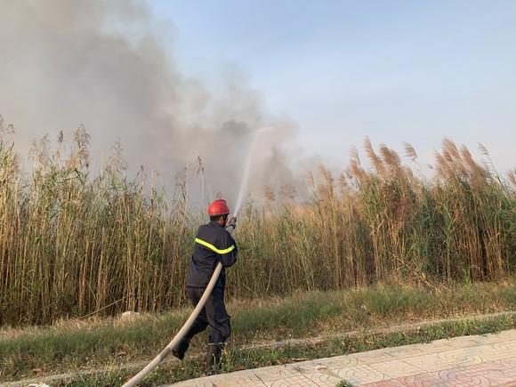 PCCC TPHCM nhận được 13 tin báo cháy cỏ trong 1 ngày ảnh 2