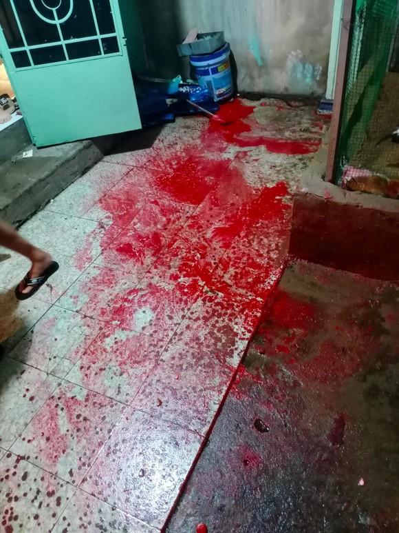Một gia đình ở TP Thủ Đức liên tục bị đe doạ, tạt sơn ảnh 2