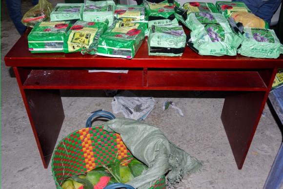 Vận chuyển 20kg ma túy từ Đồng Tháp lên TPHCM, ngụy trang trong túi đựng xoài ảnh 2