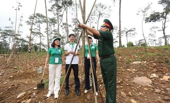 Thực hiện di chúc lời Bác dạy, Khu di tích K9 trồng hàng trăm cây Chò ảnh 2