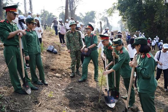 """Phủ xanh 2.000 cây Thông Mã Vĩ trên đồi cây """"Dâng Bác – Ơn Thầy"""" ảnh 9"""