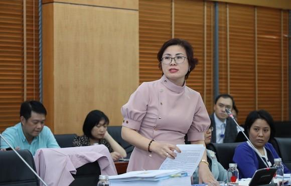 Hội đồng thẩm định thông qua đề án sắp xếp các đơn vị hành chính tại TPHCM  ảnh 3
