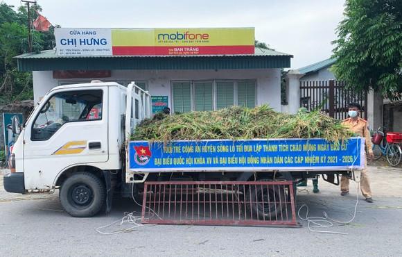 Công an xuống đồng thu hoạch lúa giúp dân đang cách ly y tế ảnh 2