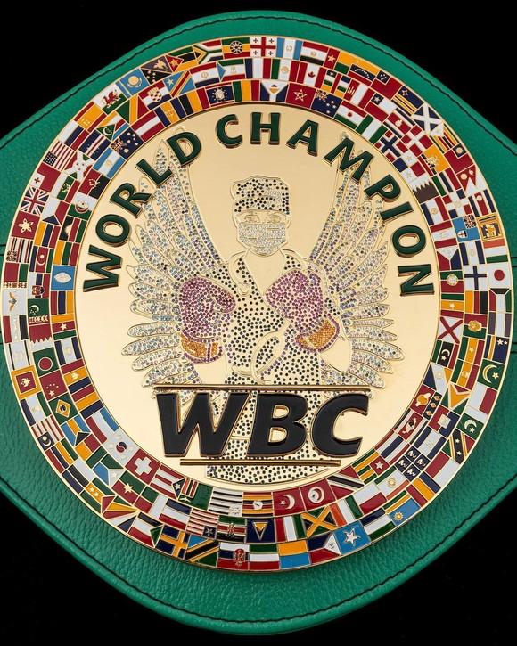 """Errol Spence Jr: Thắng điểm Danny Garcia, giành đai WBC """"bác sĩ"""" để tri ân những đóng góp chống dịch Covid-19 ảnh 2"""