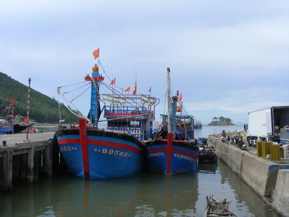 Nghệ An: Gần 56 tỷ đồng xây kè tránh bão cho tàu thuyền ảnh 1
