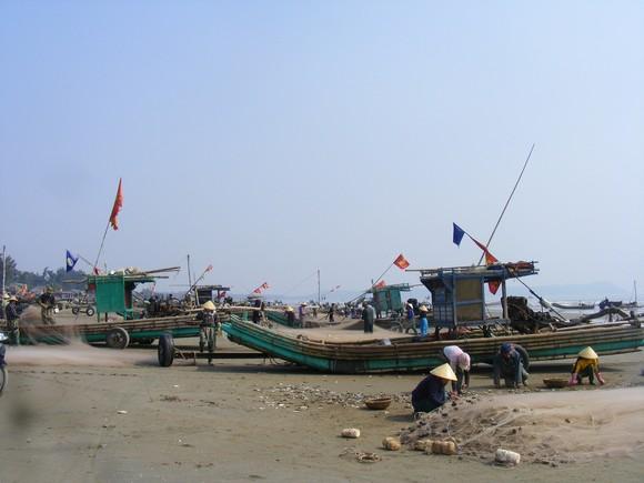 Ngư dân Thanh Hóa 'mở cửa biển', ra khơi đánh bắt đầu năm ảnh 3