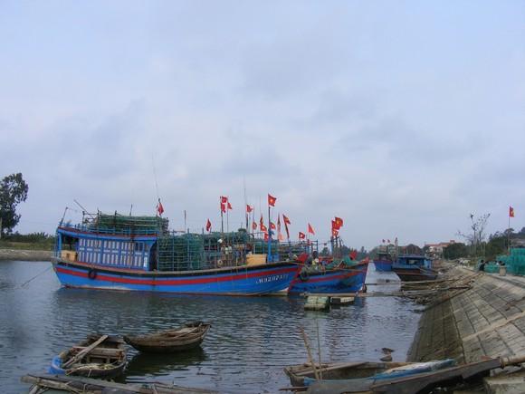 Từ 13 giờ hôm nay, Thanh Hóa cấm tàu thuyền ra khơi ảnh 1