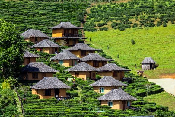 旅遊休閒可吸收文化和自然景觀。