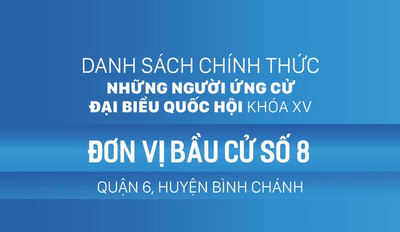 Đơn vị bầu cử số 8 (quận 6, huyện Bình Chánh)