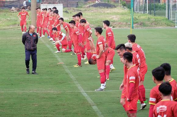 VFF đề xuất cách ly 7 ngày đối với HLV Park Hang-seo và các trợ lý  ảnh 1