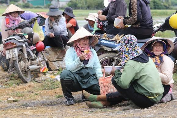 Đắk Lắk: Người dân 'chạy đua' với nước lũ để cứu lúa ảnh 7