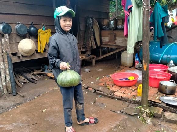 Đồng bào Xê Đăng lên rừng hái măng ủng hộ người dân TPHCM ảnh 11