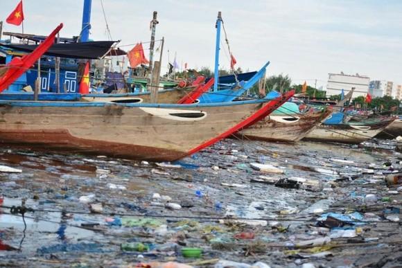 Đà Nẵng tìm phương án giải quyết ô nhiễm môi trường tại âu thuyền Thọ Quang ảnh 2