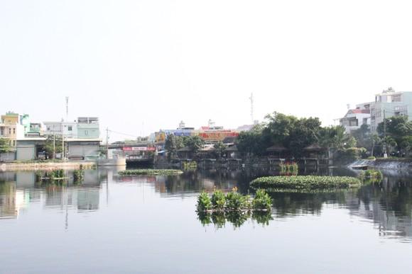 Tìm giải pháp xử lý mùi hôi tại hồ Bàu Trảng ảnh 2