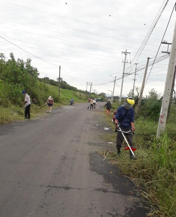 Đà Nẵng thu gom hơn 1.300 tấn rác phát sinh do bão số 5 ảnh 2
