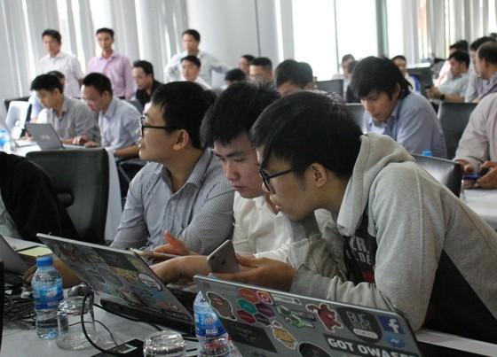 Đà Nẵng xúc tiến đầu tư ICT Nhật Bản ảnh 2