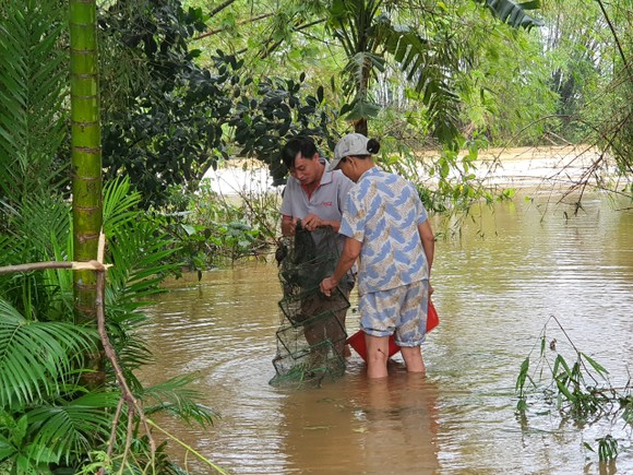 Sinh hoạt của người dân vùng lũ Đà Nẵng  ảnh 7