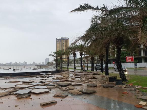 Quảng Bình mưa trắng trời, Huế cây cối ngã đổ ảnh 19