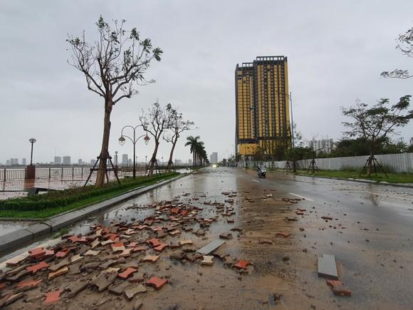Quảng Bình mưa trắng trời, Huế cây cối ngã đổ ảnh 17