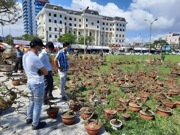 Tiểu thương chợ hoa tết ở Đà Nẵng 'nhớ' người mua ảnh 3