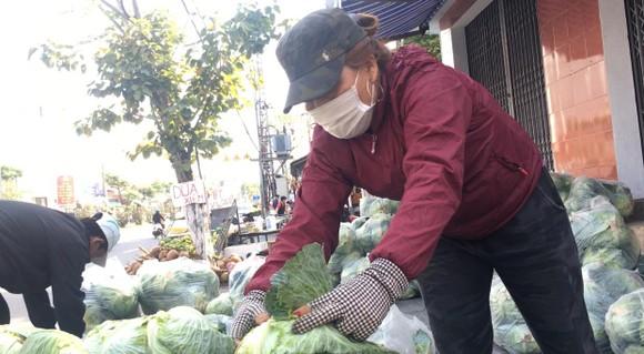 Người Đà Nẵng chung tay giải cứu nông sản Hải Dương ảnh 6