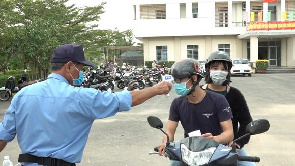 Đà Nẵng: Người dân hào hứng với vườn cúc họa mi trái mùa  ảnh 10