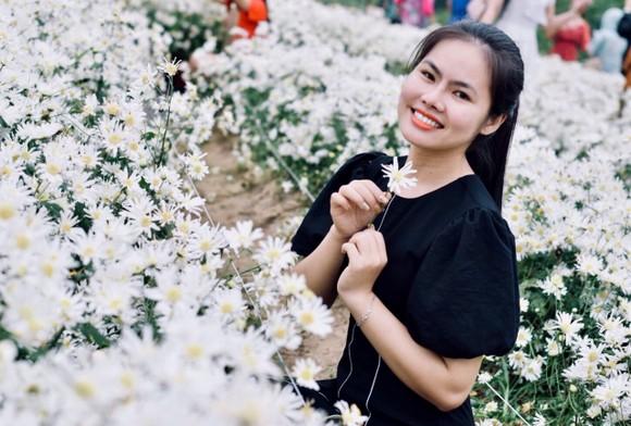 Đà Nẵng: Người dân hào hứng với vườn cúc họa mi trái mùa  ảnh 5