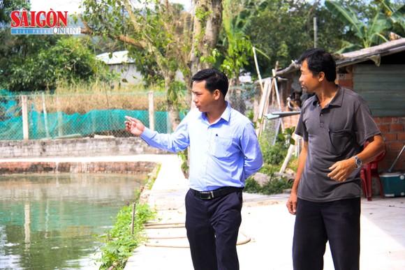 Đà Nẵng: Nông dân làm giàu nhờ nuôi cá phục vụ du lịch sinh thái ảnh 3