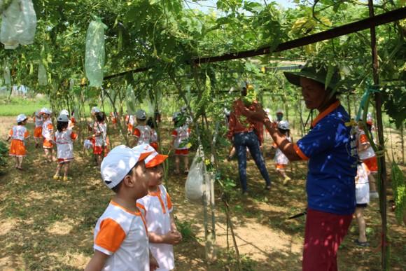 Đà Nẵng sẽ ban hành Nghị quyết để phát triển riêng huyện Hòa Vang ảnh 2