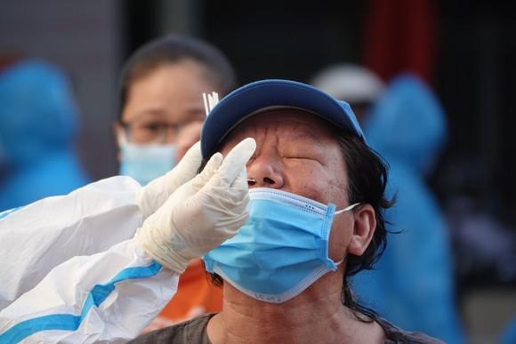 Đà Nẵng bắt đầu xét nghiệm SARS-CoV-2 đại diện hộ gia đình  ảnh 9