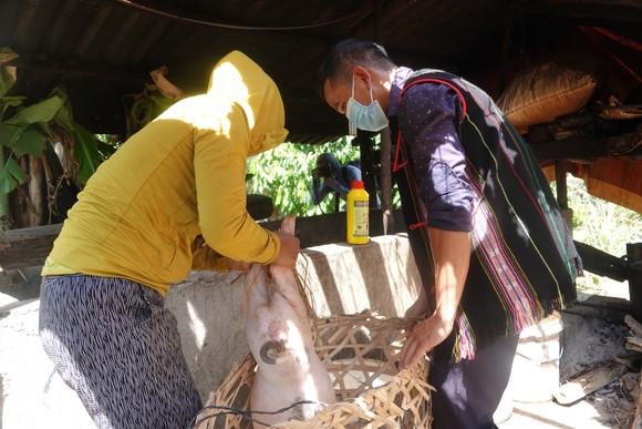 Đà Nẵng: Tạo sinh kế cho thanh niên huyện miền núi ảnh 2