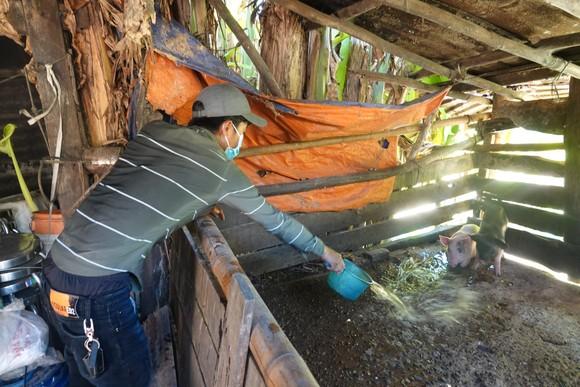 Đà Nẵng: Tạo sinh kế cho thanh niên huyện miền núi ảnh 3