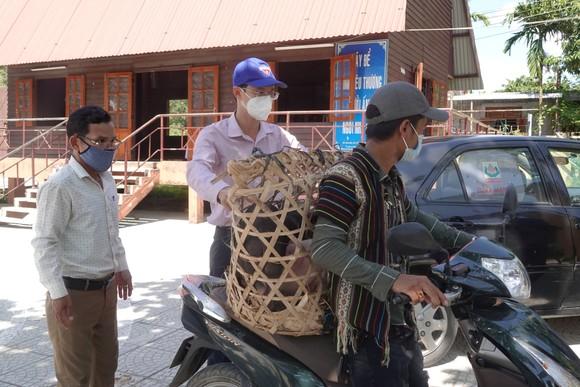 Đà Nẵng: Tạo sinh kế cho thanh niên huyện miền núi ảnh 1
