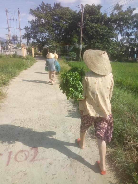 Quảng Nam hỗ trợ cho Đà Nẵng hơn 30 tấn thực phẩm thiết yếu ảnh 6