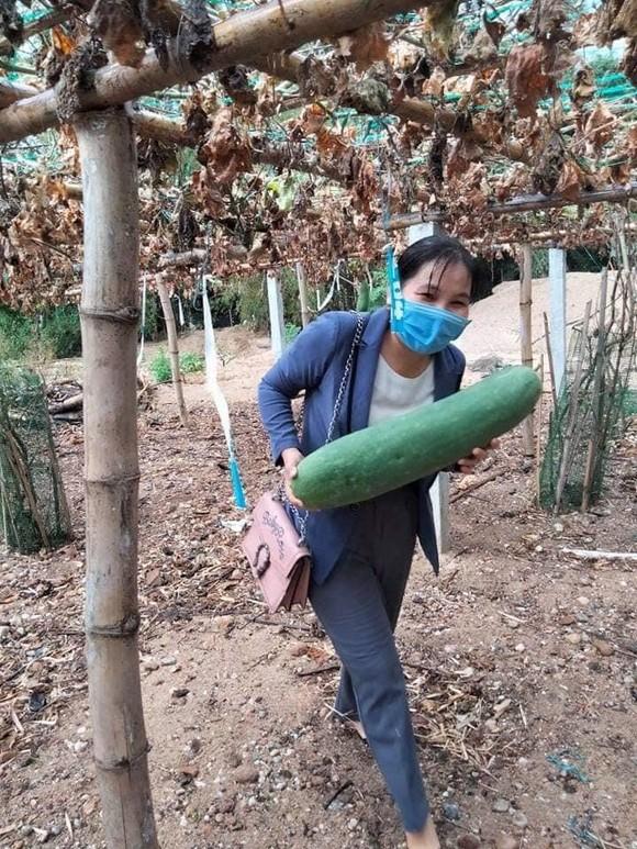 Quảng Nam hỗ trợ cho Đà Nẵng hơn 30 tấn thực phẩm thiết yếu ảnh 7