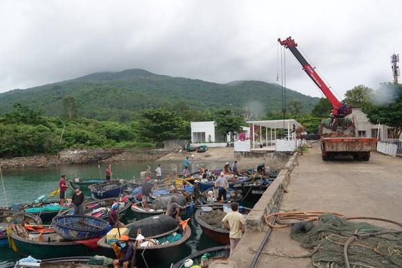 Đà Nẵng: Tất bật chống bão Conson giữa dịch Covid-19 ảnh 5