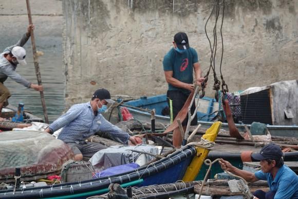 Đà Nẵng: Tất bật chống bão Conson giữa dịch Covid-19 ảnh 6