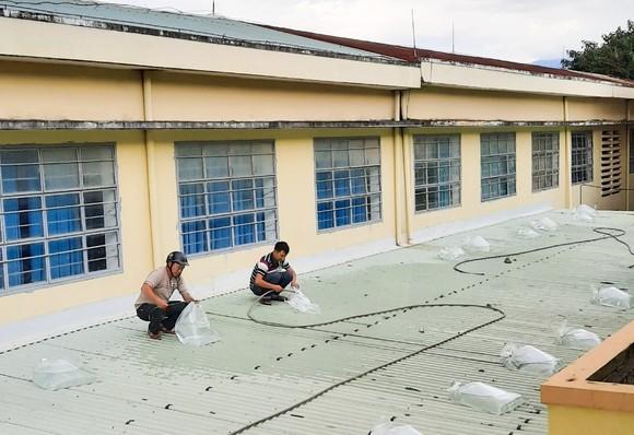 Đà Nẵng: Tạo điều kiện cho địa phương sử dụng cơ sở giáo dục làm nơi tập kết, sơ tán dân ảnh 9