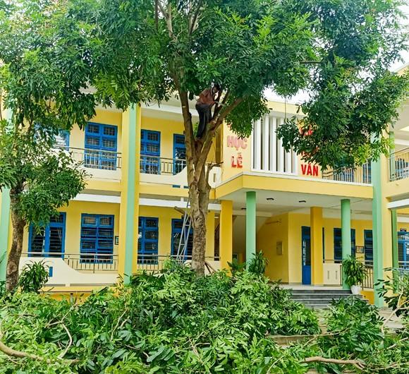 Đà Nẵng: Tạo điều kiện cho địa phương sử dụng cơ sở giáo dục làm nơi tập kết, sơ tán dân ảnh 1