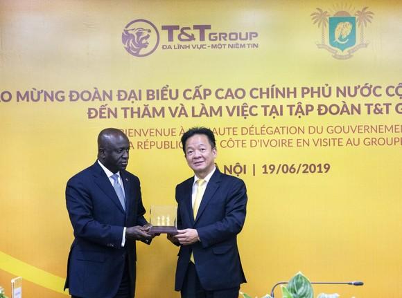 Bộ trưởng Ngoại giao Cộng hòa Bờ Biển Ngà Marcel Amon đến thăm và làm việc tại T&T Group ảnh 3