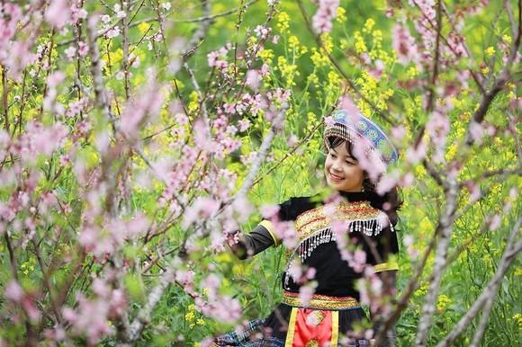 Giới trẻ ngỡ ngàng trước vẻ đẹp Fansipan mùa Xuân ảnh 4