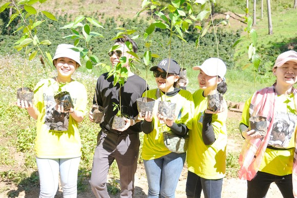 Nhân viên một doanh nghiệp ở TPHCM nhận cây giống miễn phí từ chị Phan Diệu Linh