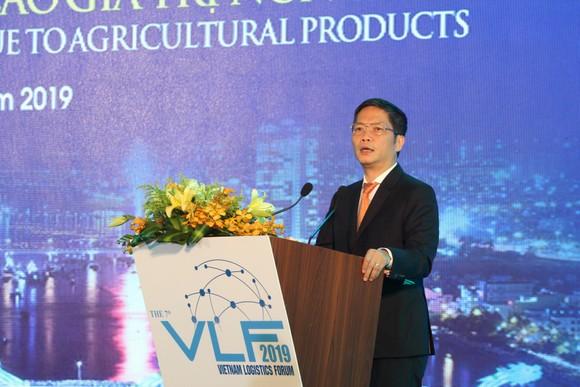 Phó Thủ tướng Vương Đình Huệ: Tạo điều kiện phát triển logistics ảnh 5