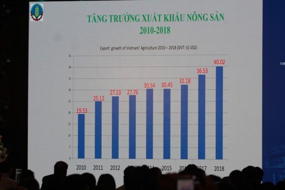 Phó Thủ tướng Vương Đình Huệ: Tạo điều kiện phát triển logistics ảnh 3
