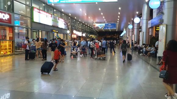 Không có việc khách du lịch ùn ùn đi khỏi Đà Nẵng ảnh 6